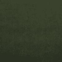 Warwick Mystere Velvet Spruce