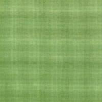 Warwick Noosa Lime