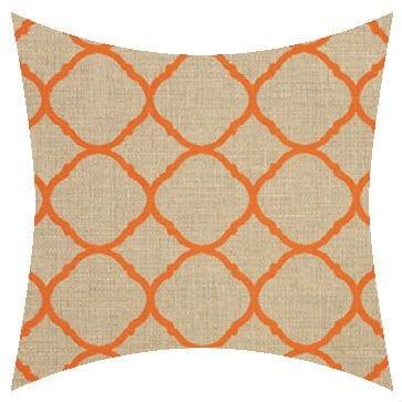 Sunbrella Accord Koi Outdoor Cushion